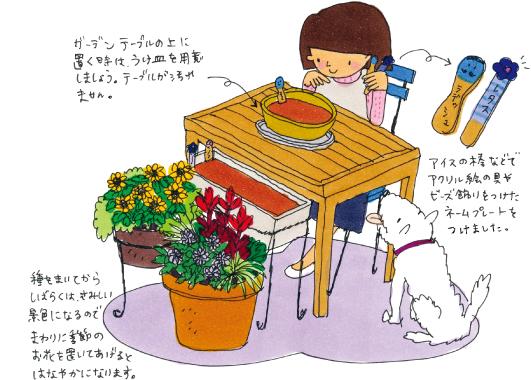 秋冬野菜の植えつけ