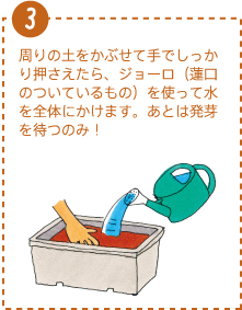 周りの土をかぶせて手でしっかり押さえたら、ジョーロ(蓮口のついているもの)を使って水を全体にかけます。あとは発芽を待つのみ!