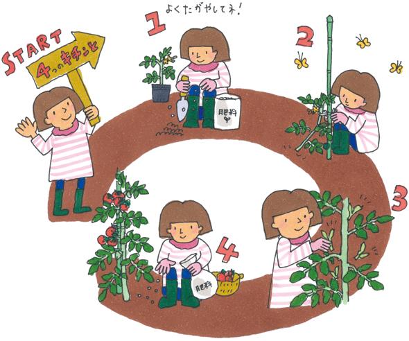 始めてみよう!野菜作り!