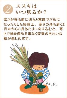 寒さが来る前に切ると寒風でだめになったりした経験上、寒さの落ち着く2月末から3月あたりに刈り込むと、寒さで株を傷める事なく翌春のきれいな穂が楽しめます。