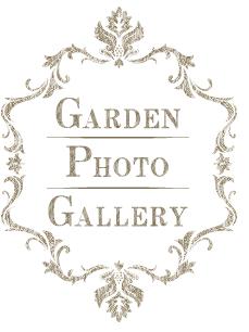 ガーデンフォトギャラリー
