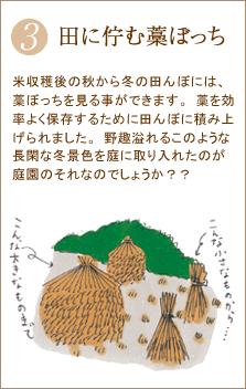 米収穫後の秋から冬の田んぼには、藁ぼっちを見る事ができます。藁を効率よく保存するために田んぼに積み上げられました。野趣溢れるこのような長閑な冬景色を庭に取り入れたのが庭園のそれなのでしょうか?