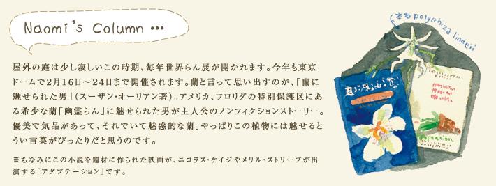 屋外の庭は少し寂しいこの時期、毎年世界らん展が開かれます。今年も東京ドームで2月16日~24日まで開催されます。蘭と言って思い出すのが、「蘭に魅せられた男」(スーザン・オーリアン著)。アメリカ、フロリダの特別保護区にある希少な蘭「幽霊らん」に魅せられた男が主人公のノンフィクションストーリー。優美で気品があって、それでいて魅惑的な蘭。やっぱりこの植物には魅せるとうい言葉がぴったりだと思うのです。