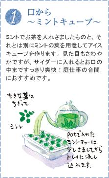 ミントでお茶を入れさましたものと、それとは別にミントの葉を用意してアイスキューブを作ります。見た目もさわやかですが、サイダーに入れるとお口の中まですっきり爽快!庭仕事の合間におすすめです。