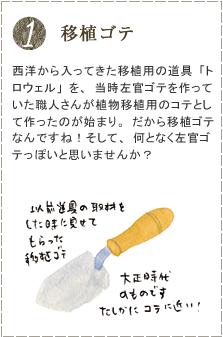 西洋から入ってきた移植用の道具「トロウェル」を、当時左官ゴテを作っていた職人さんが植物移植用のコテとして作ったのが始まり。だから移植ゴテなんですね!そして、何となく左官ゴテっぽいと思いませんか?