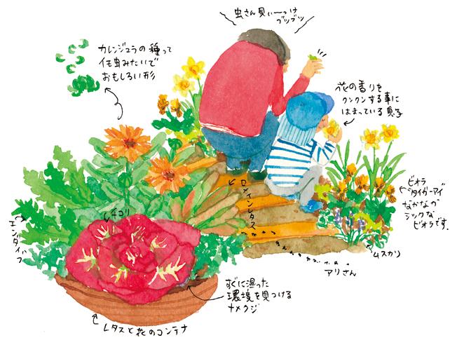 春爛漫 花と虫の関係