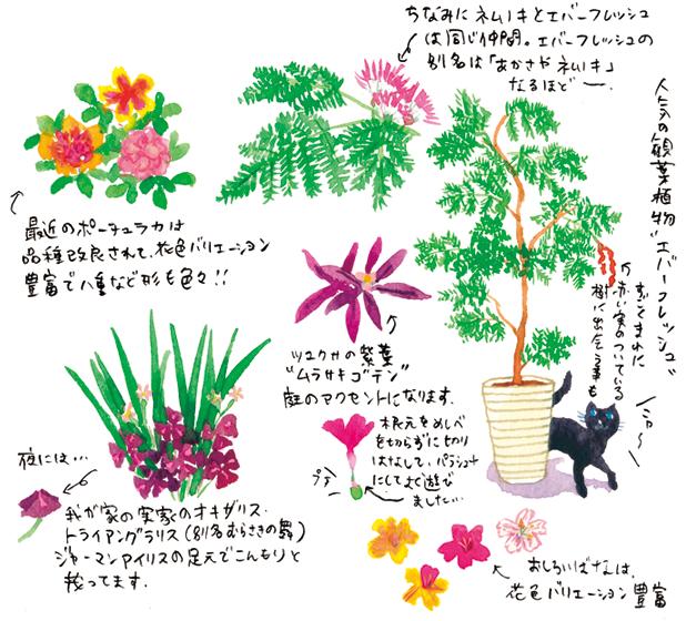 植物の不思議。よく見て観察しよう!