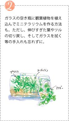 ガラスの空き瓶に観葉植物を植え込んでミニテラリウムを作る方法も。ただし、伸びすぎた葉やツルの切り戻し、そしてガラスを拭く等の手入れも忘れずに。